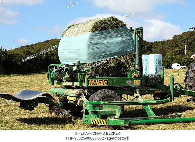 Silage crop, McHale bale-wrapper, wrapping bales of grass silage, on organic farm, Powys, Wales