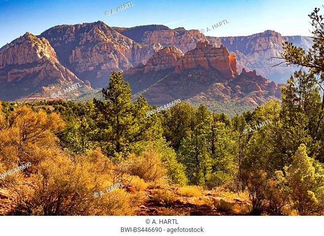 sunrise over red rocks east of Sedona, USA, Arizona, Mogollon Rim, Sedona