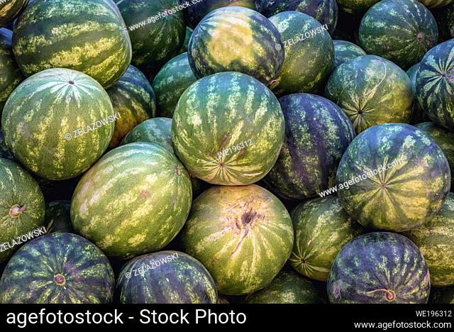 Watermelons for sale in Marginea village, located in Suceava County, Romania