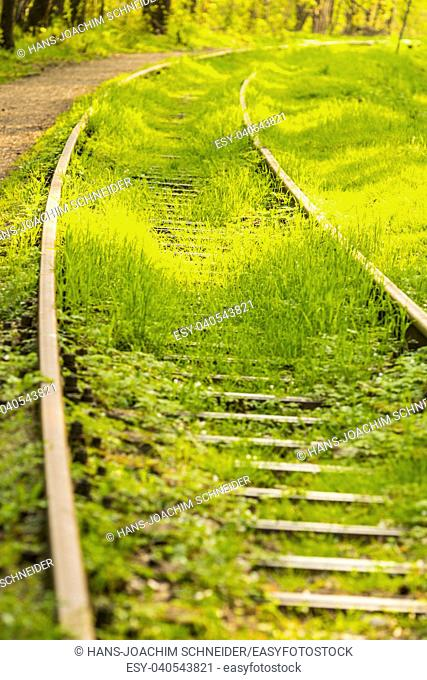 rails out of order, overgrown with green grass in Poland