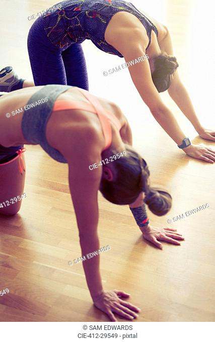 Women doing cat pose in exercise class