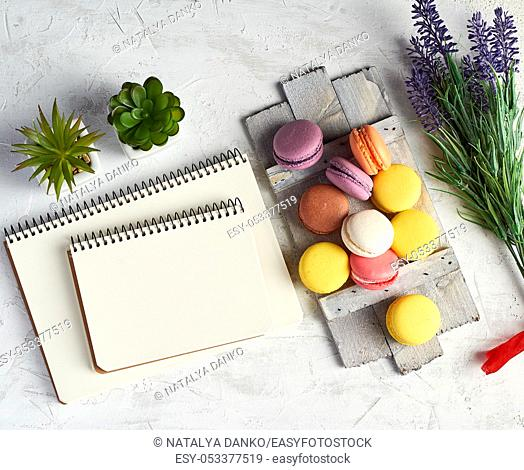 baked round multi-colored macarons on a wooden board, stack of spiral notebooks, next to green plants in white ceramic pots, top view, workplace