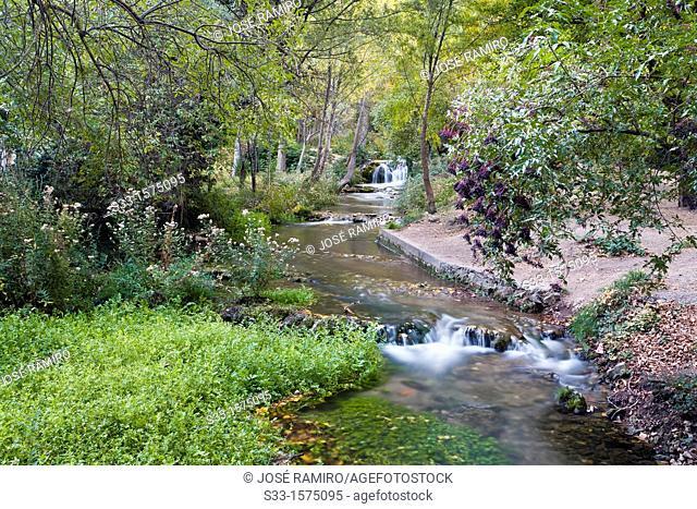 Dulce river in Aragosa  Guadalajara  Castilla la Mancha  Spain