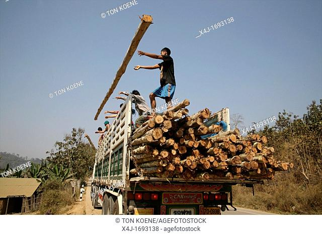 Builders unload logs to build more refugee homes Around 130, 000 Burmese refugees have settled in Thailand due to opression in their homeland of Myanmar Burma...