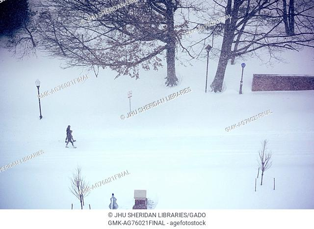 Two students walk along Charles Street covered in snow, with lamp posts and trees jutting out from the white, during a snow day at Johns Hopkins University
