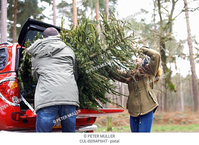 Young couple lifting Christmas tree into car boot
