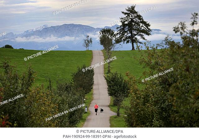 24 September 2019, Bavaria: A jogger and her dog run over a hilltop under a cloudy sky in front of the panorama of the Alps
