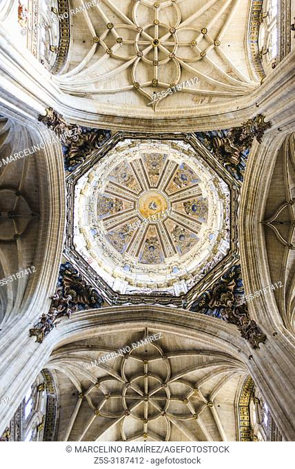 Interior of the dome, the New Cathedral is one of the two cathedrals of Salamanca, Castilla y Leon, Spain, Europe