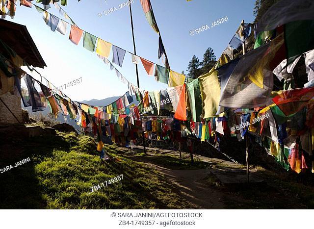 Prayer flags near the Taktsang Monastery Tiger's Nest, Paro Valley, Bhutan, Asia