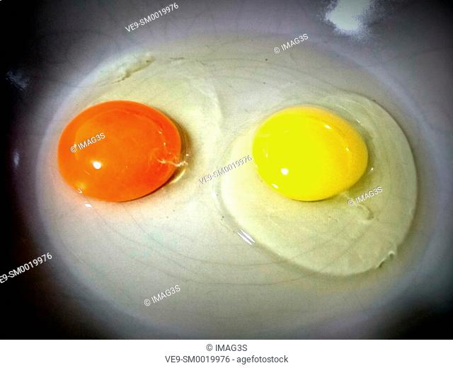 Organic egg (left) compared with another one from a factory (right)