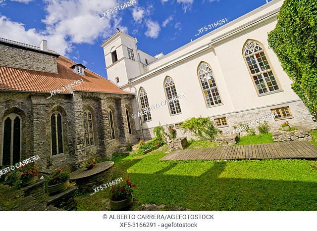 Saint Catherine's Monastery, Dominican Monastery, Old Town, Tallinn, Estonia, Europe