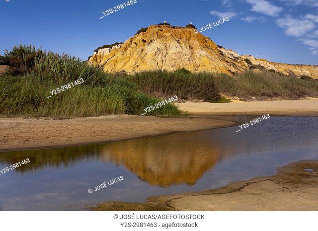 Torre del Loro beach, Mazagon, Moguer, Huelva province, Region of Andalusia, Spain, Europe