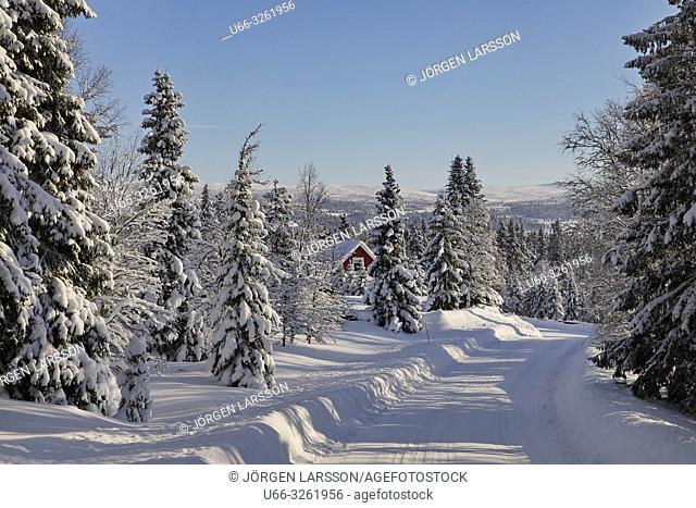 Sorvattnet, Sweden