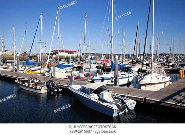 Port Boat Haven, Port Townsend, State of Washington, USA, America