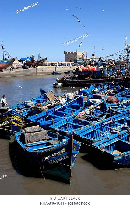 Fishing port with traditional boats in front of the old fort, Essaouira, Atlantic coast, Morocco, North Africa, Africa