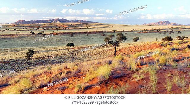 Wolwedans Landscape Panoramic Composite Image - NamibRand Nature Reserve - Hardap Region, Namibia, Africa