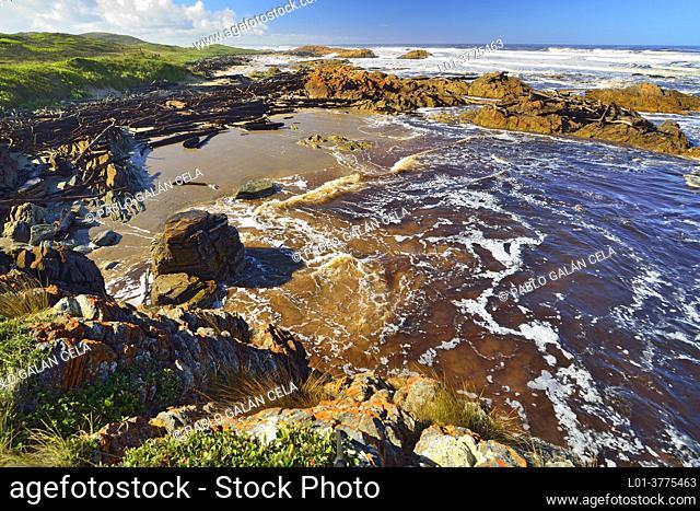 Coastal scenery near Nelson Bay, Tasmania (Australia)