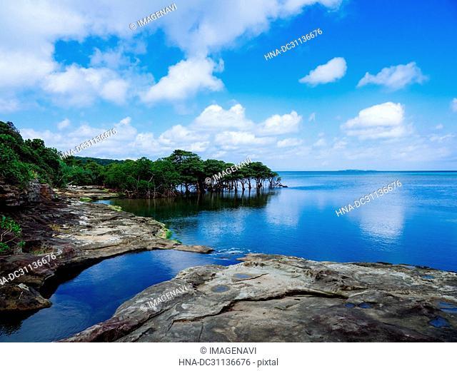 Seashore at Nishi Iriomote Island, Okinawa Prefecture, Japan