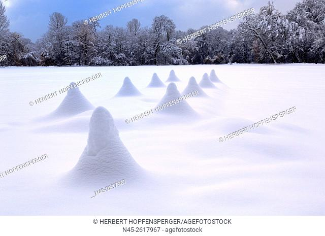 Frostiness, snow covered lake Kleinhesseloher See, district Schwabing, English Garden, Munich