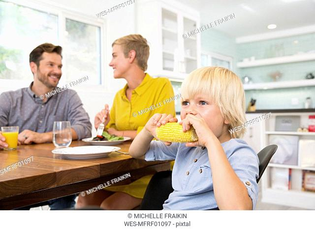 Boy eating corn cob in kitchen with parents in background