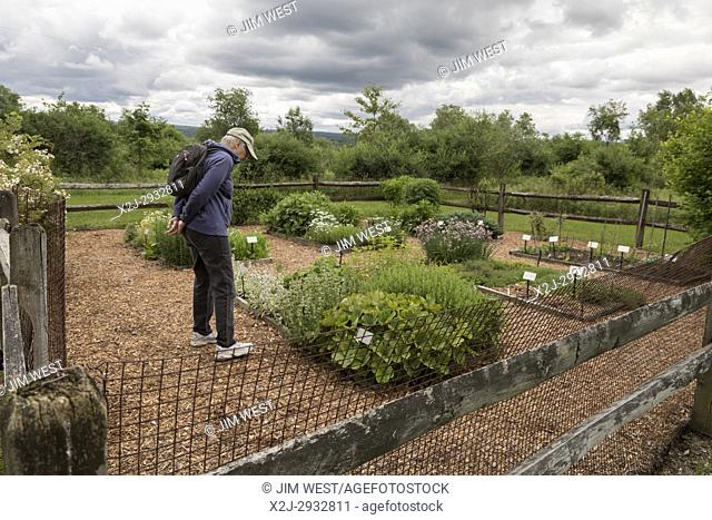 Indiana, Pennsylvania - A visitor studies an herb garden in Yellow Creek State Park. The garden was originally planted by the Stake family