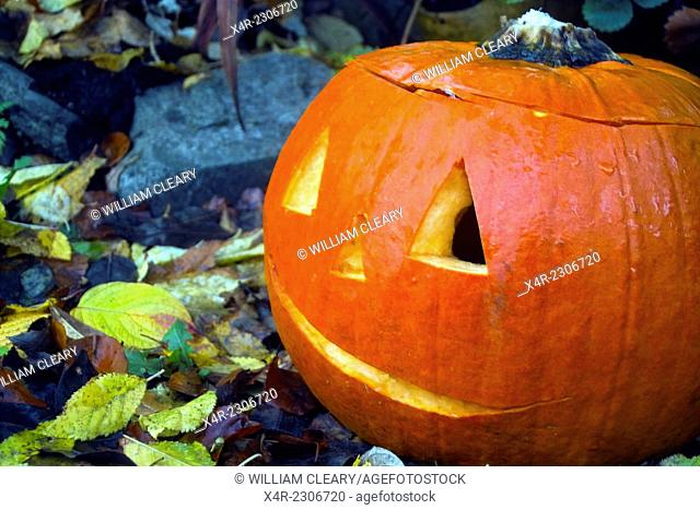 Festively carved pumpkin