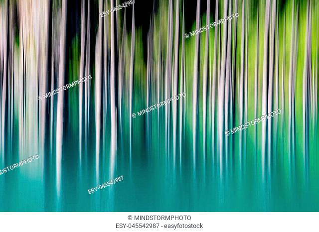 Abstract background of empty trees blurred vertically