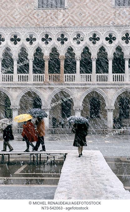 Snowfall, Venice, Italy