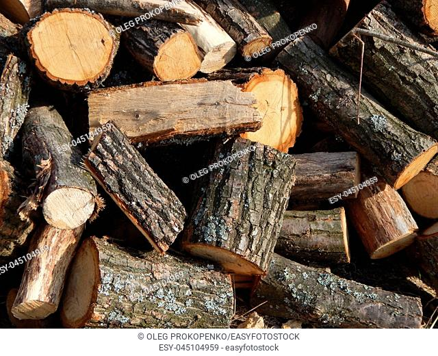 Cutting wood logs in the country