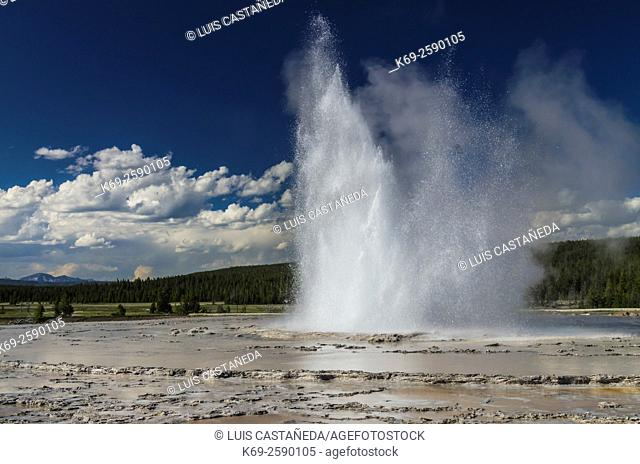 Fountain Geyser at Yellowstone National Park. Wyoming. USA