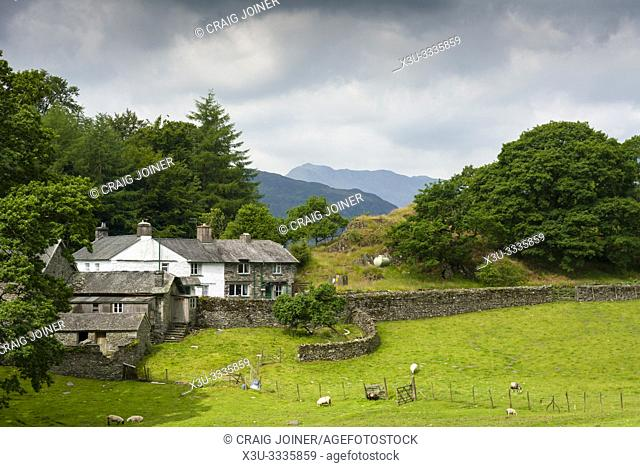 Farm Cottages at the foot of Loughrigg Tarn in the Lake District National Park, Cumbria, England