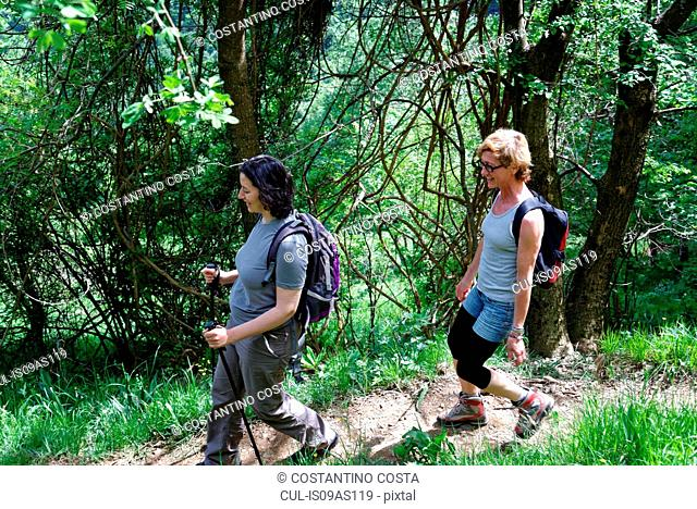 Two mature female hikers hiking along forest path