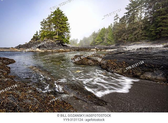Botanical Beach Provincial Park and Botany Bay - Juan de Fuca Marine Trail - Port Renfrew, Vancouver Island, British Columbia, Canada