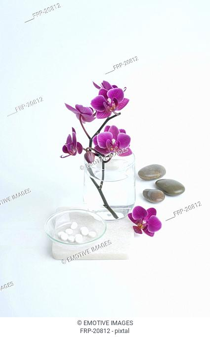 Tissue salts and orchid blossoms