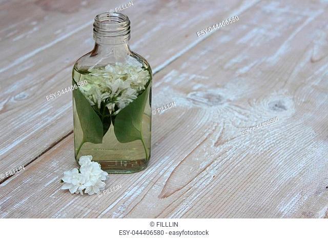 Medical tincture from flowers of white lilac on boards