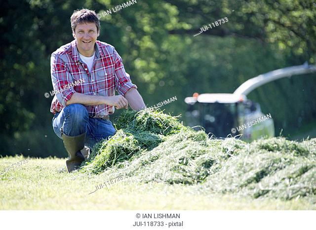 Farmer checking silage grass crop and smiling at camera in field