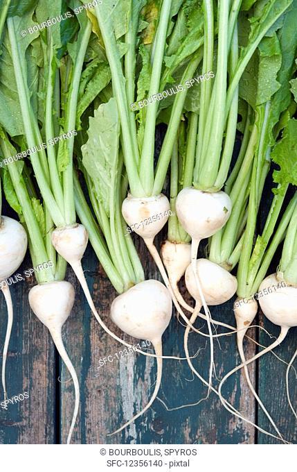 Fresh white turnips at a farmers market
