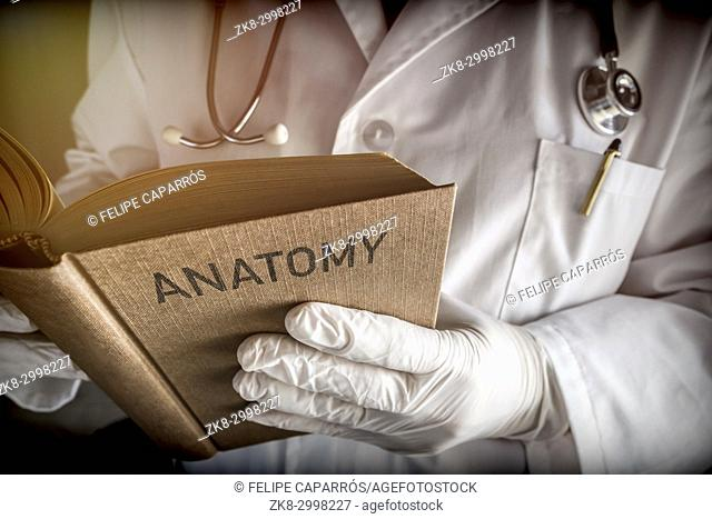 Doctor Reading Book Of Old Anatomy, Conceptual Image
