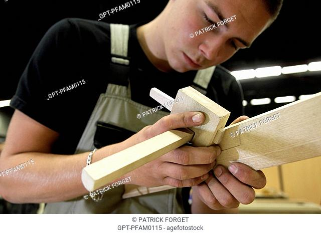 WOODWORKER, CARPENTRY AND JOINERY, THE BUILDING SECTOR, 41ST OLYMPIAD OF METIERS IN BRITTANY, BREST, FINISTERE 29, FRANCE