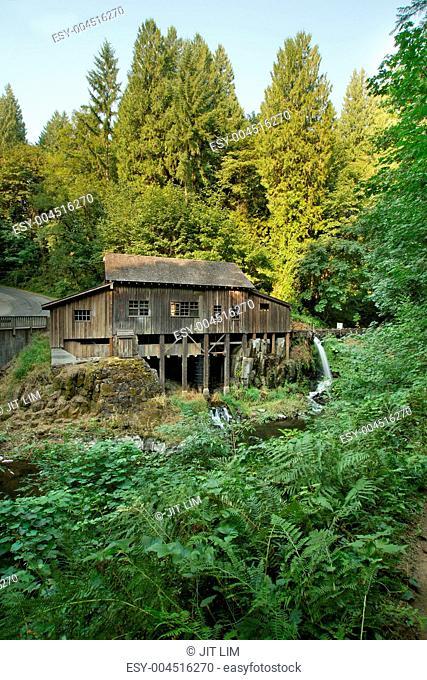 Historic Grist Mill along Cedar Creek Forest