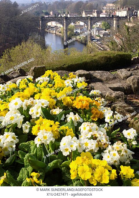 Spring Flowers Overlooking the River Nidd and Viaduct Knaresborough North Yorkshire England