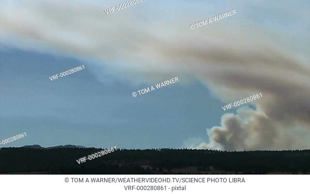 Timelapse footage of a plume of smoke from a forest fire. The wind changes direction mid-clip, altering the direction of the plume