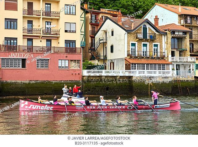 Guide accompanying tourists in rowing team training, Trainera and crew, Rowing Company Koxtape, Pasajes de San Juan (Pasaia), Gipuzkoa, Basque Country, Spain