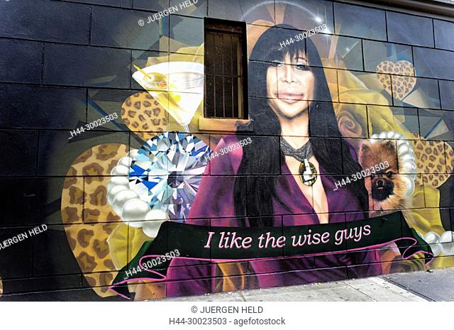 Mural with Cher in Brooklyn,New York, USA