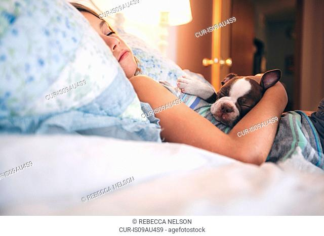 Girl lying in bed holding Boston Terrier puppy eyes closed sleeping