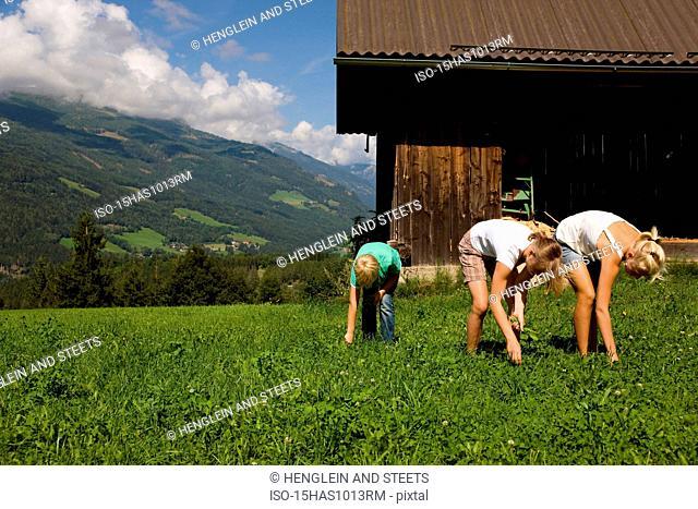 boy and girls weeding pasture