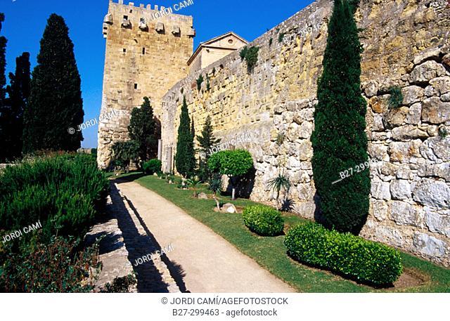 Ramparts and Torre de l'Arquebisbe in background. Passeig Arqueologic. Tarragona. Catalonia. Spain