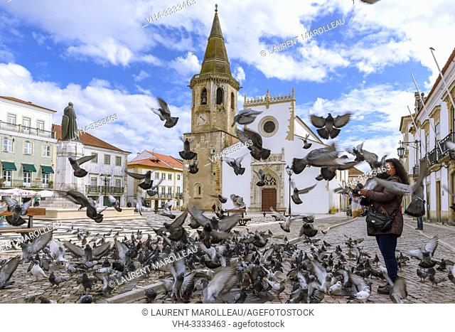 Woman Feeding Pigeons on the Republic Square with Church of Sao Joao Baptista, Tomar, Santarem District, Centro Region, Portugal