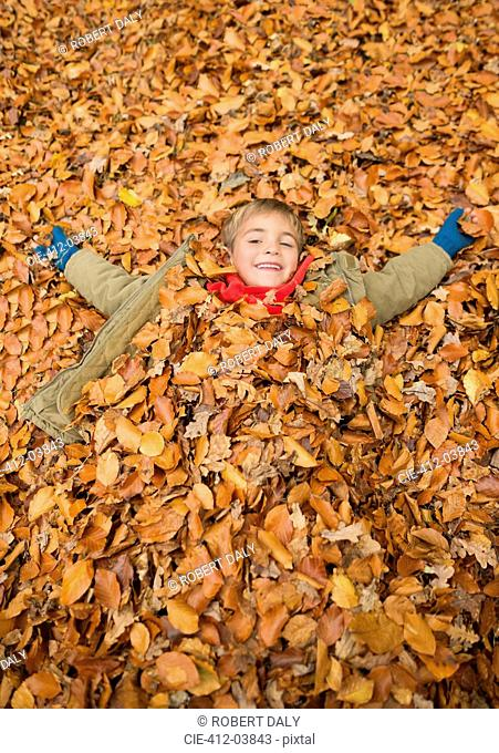 Boy laying in autumn leaves