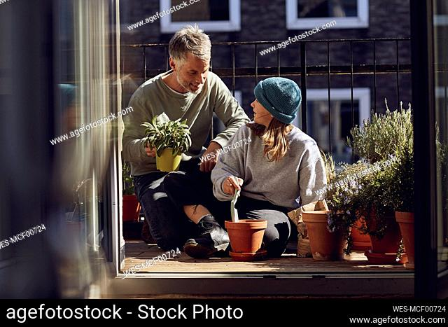 Father and daughter planting together on balcony